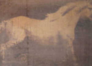 MUYBRIDGE HORSE ON LINEN